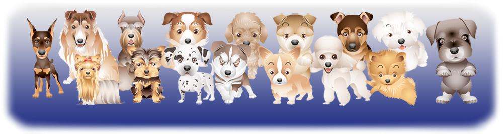 Дать объявление по продажи щенковъ доска объявлений-испанский язык